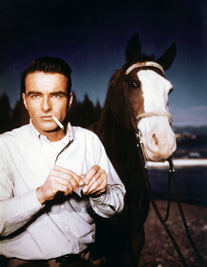 Montgomery Clift handsome portrait